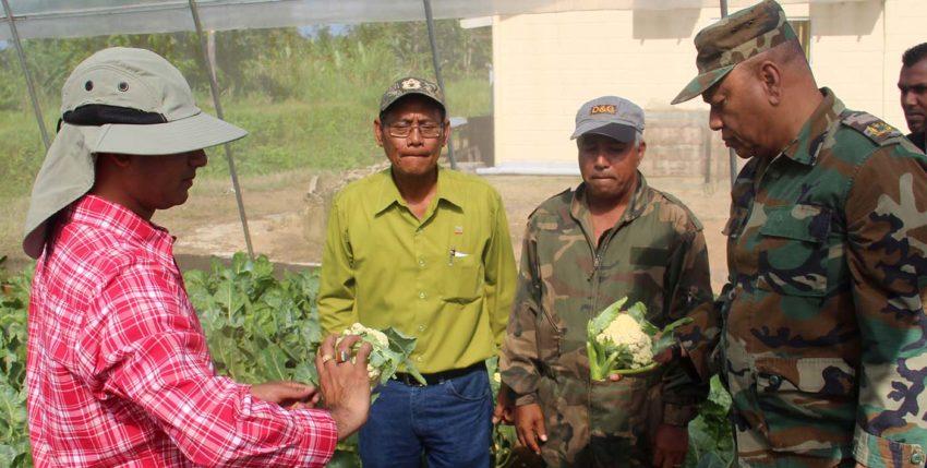 Gesubsidieerde agrarische soldaten speerpunt voor de agrarische sector?