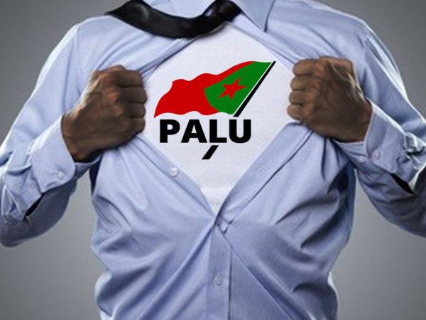 PALU, HET POLITIEK ALTERNATIEF